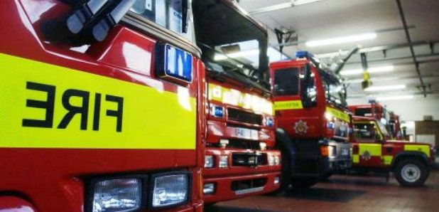 Animals evacuated after fire rips through pet shop