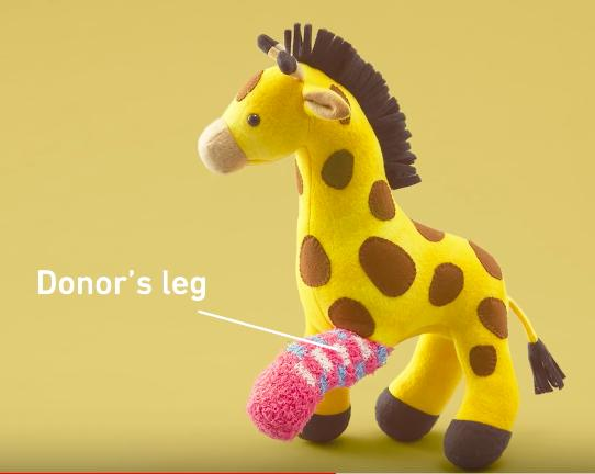 second life toys transplant