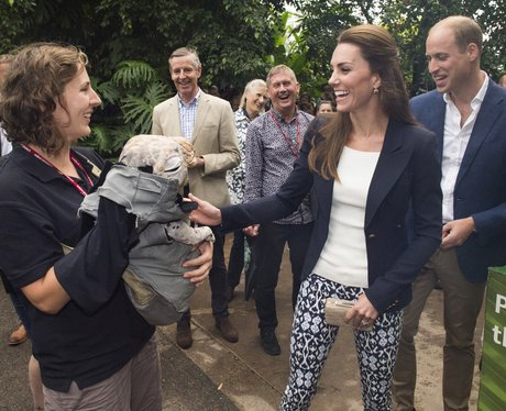 Prince William and Kate visit Eden Project