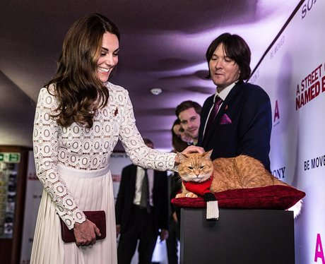 The Duchess of Cambridge and Bob the cat