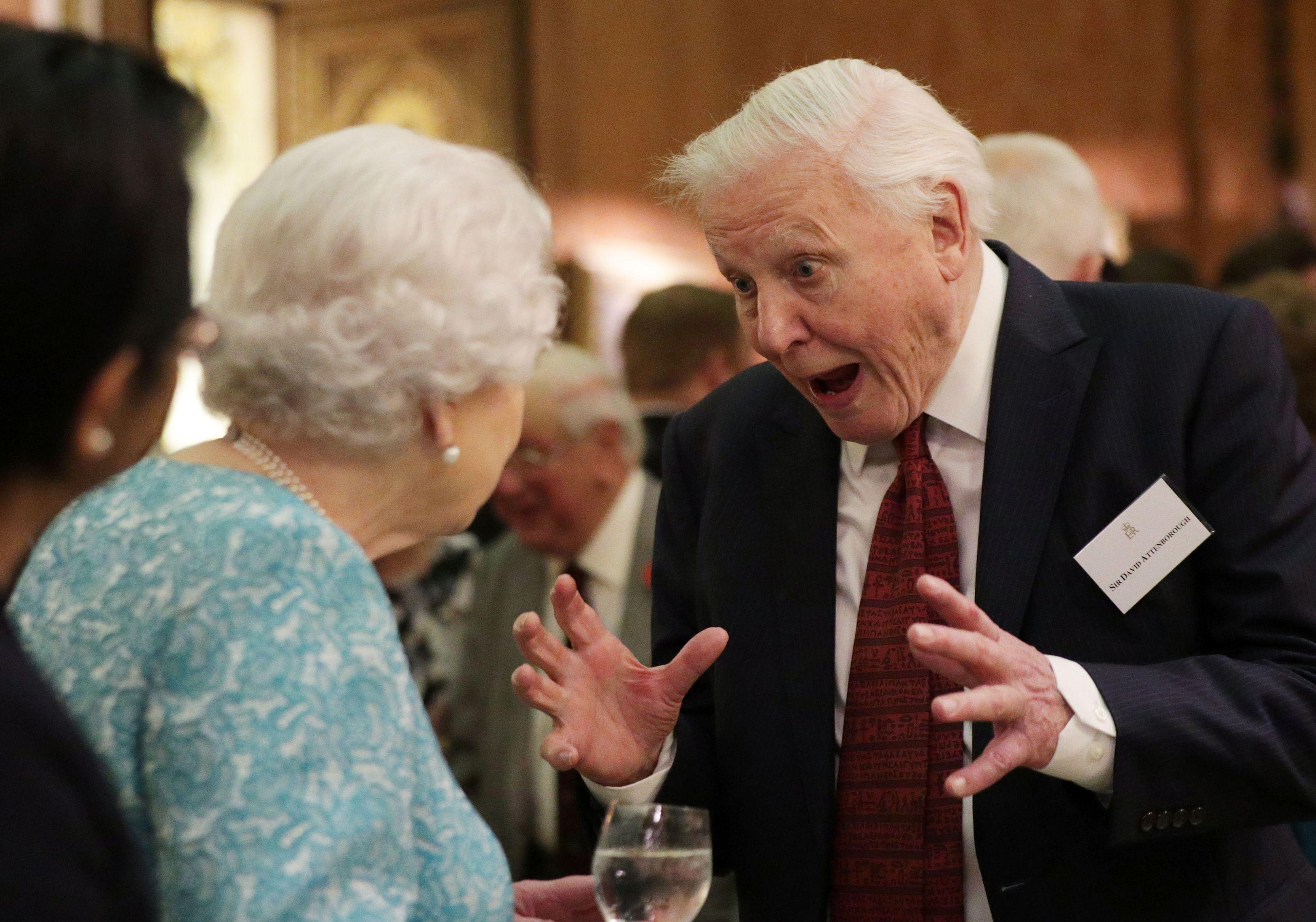 David Attenborough The Queen Hosts A Reception