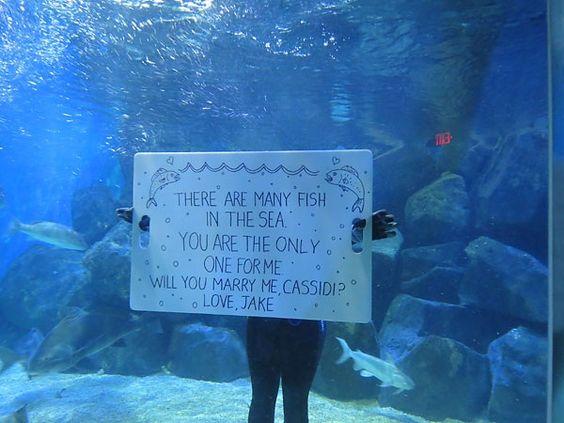 Proposal underwater