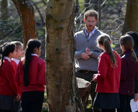 Prince Harry In Epping Forest