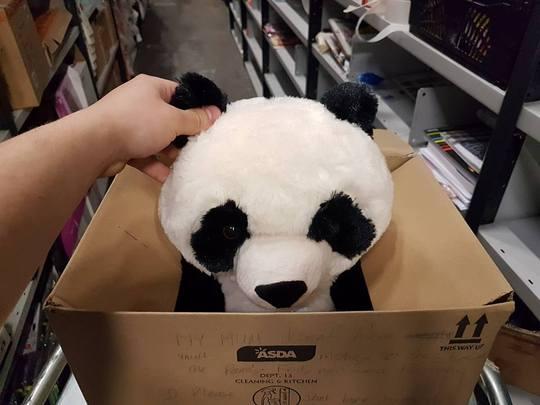 Little Boy Leaves Adorable Note On Bear In ASDA Af