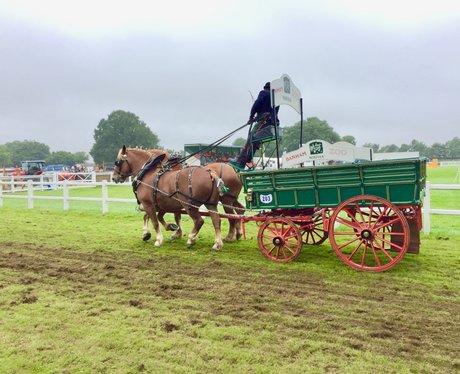 Royal Norfolk Show 17