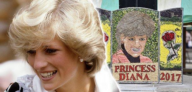 princess diana hero
