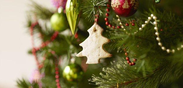 Man Dies In Christmas Tree Fall