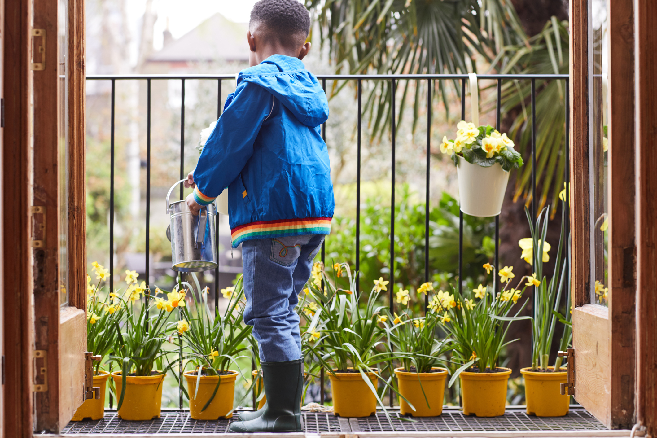Boy watering the plants