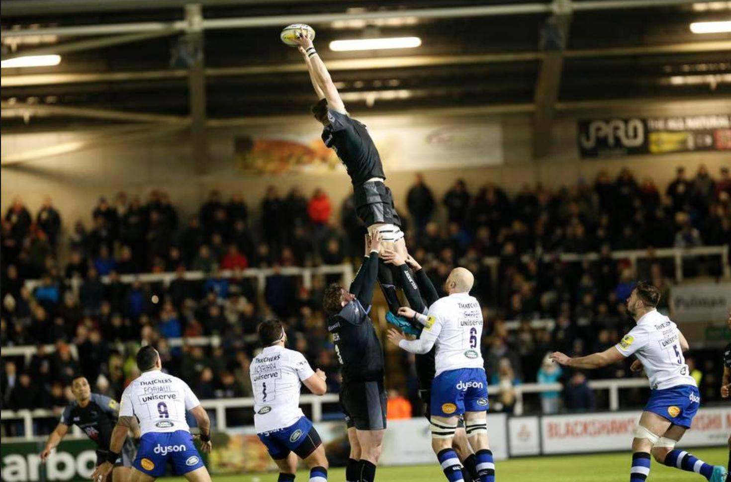 Newcastle Falcons Player