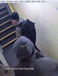 Bristol tower block thefts