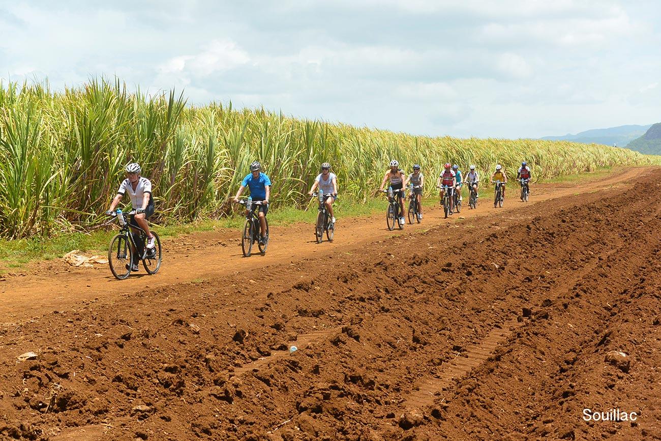 E Bike Tours Mauritius