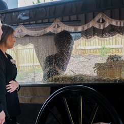 Funeral of baby Hope-Rose