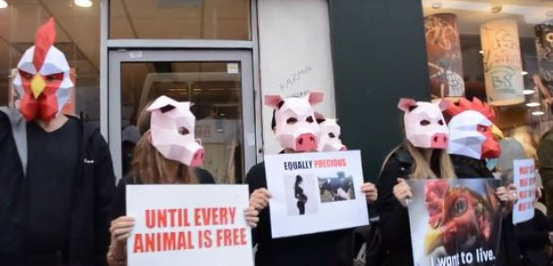 Masked Protesters Throw Fake Blood In Brighton McDonald's