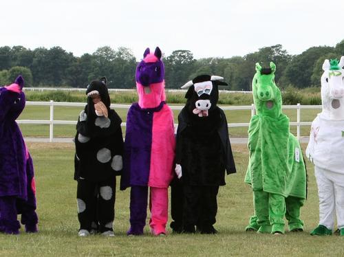 RSA Pantomime Horse Derby